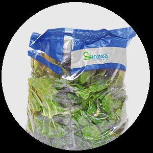 Envases Alimentarios Bolsa Compostables Aplicaciones NUREL INZEA Biopolímeros, biobasados, biodegradables
