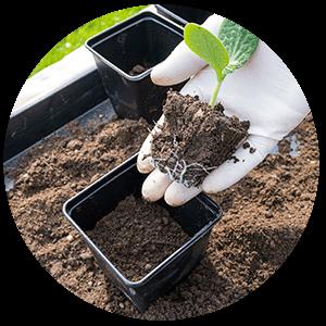 NUREL Biopolymers INZEA Biopolymers Tests & Certifications