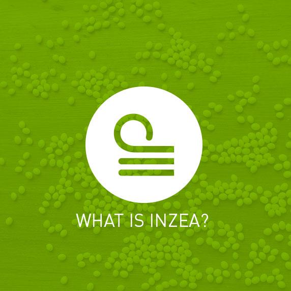 NUREL What is INZEA?