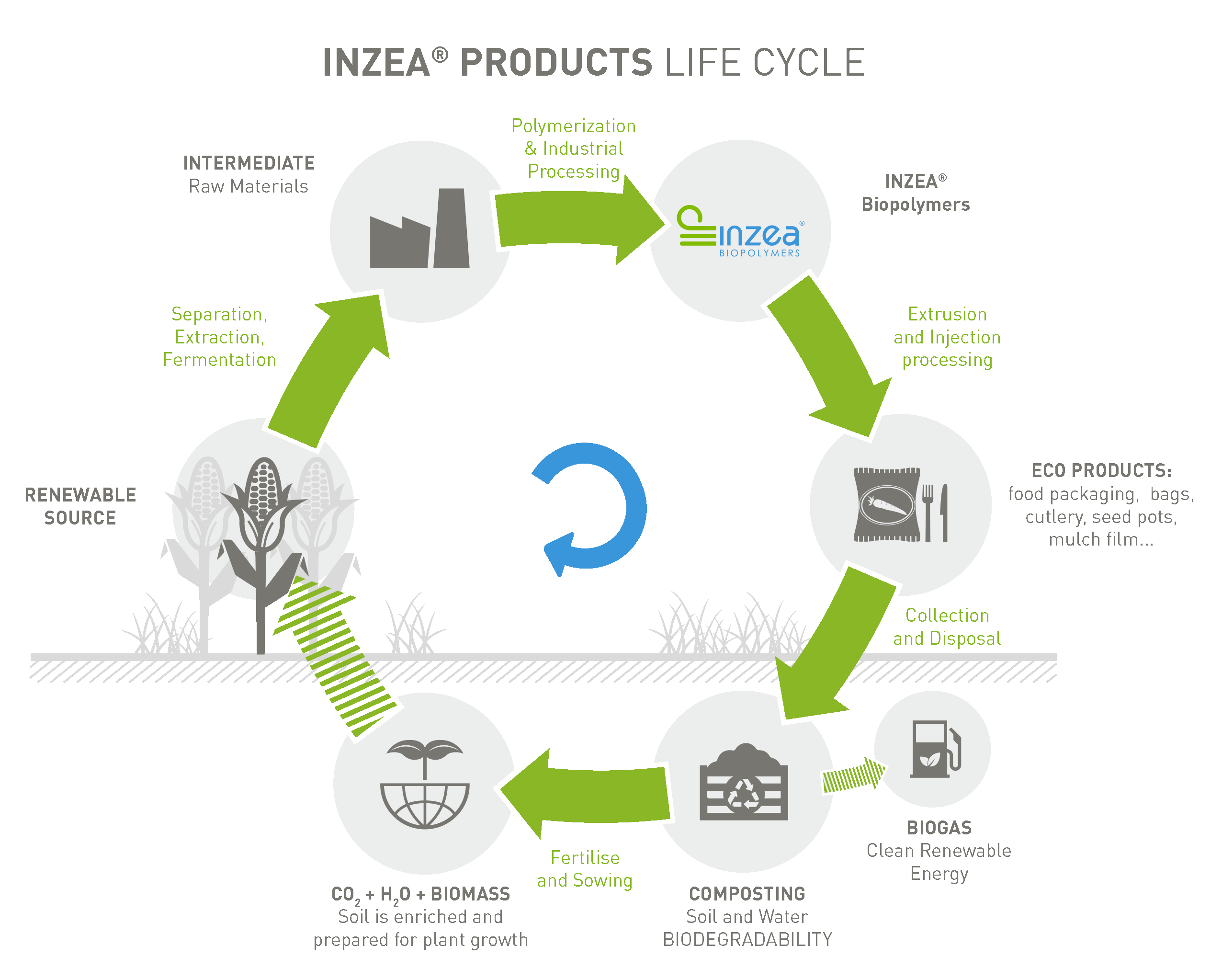 INZEA®biopolymers life cycle industrial & home composting.