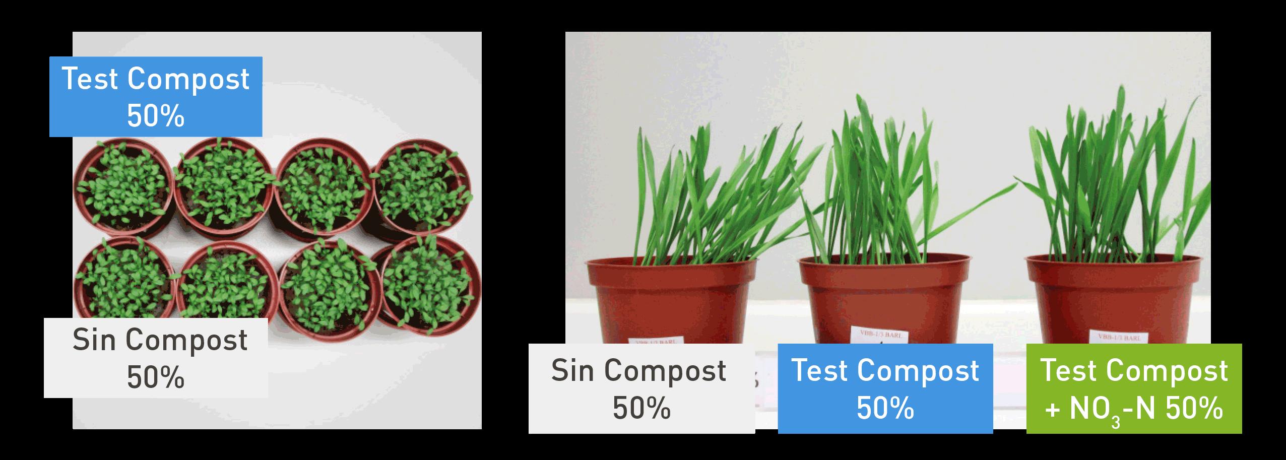 Test de ecotoxicidad de INZEA®