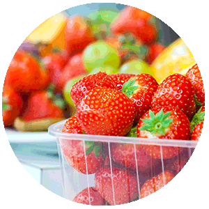 NUREL INZEA biobased compostable container