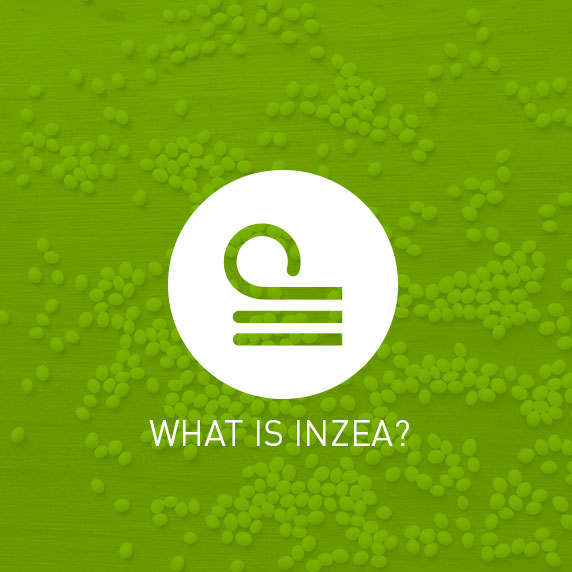 NUREL What is INZEA?